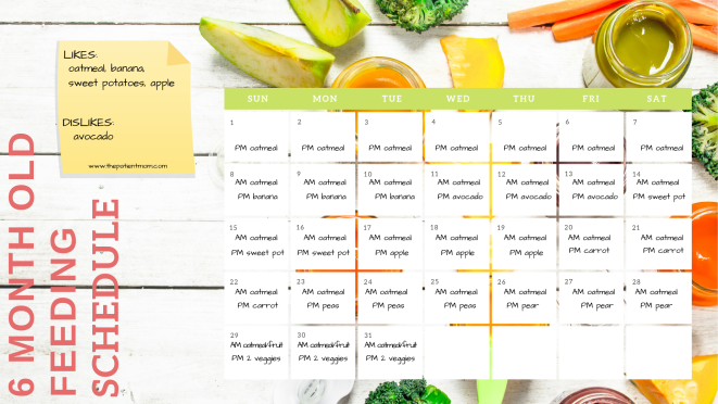 6 mo feeding schedule